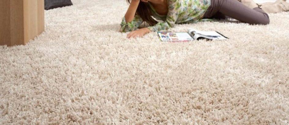 Bay Ridge Carpet & Linoleum Corp.